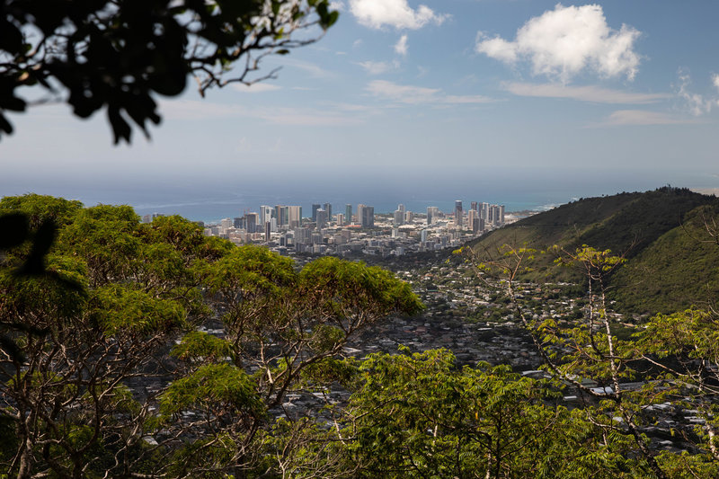 This trail offers some great views of Honolulu.