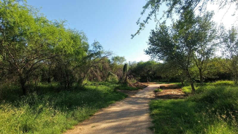 Trail passing through between Villa Del Sol Park and Independence Hill Park.
