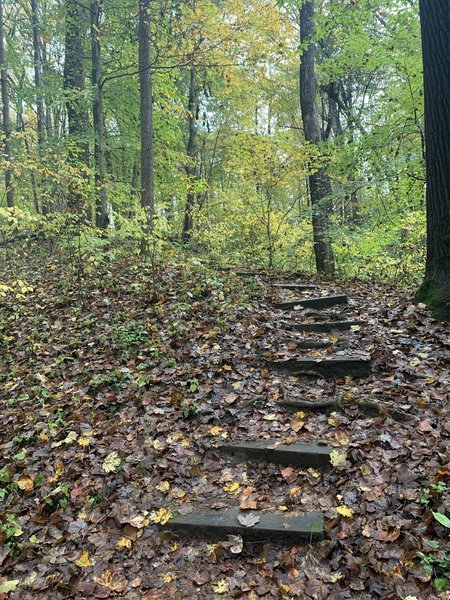Steps on a steep climb.