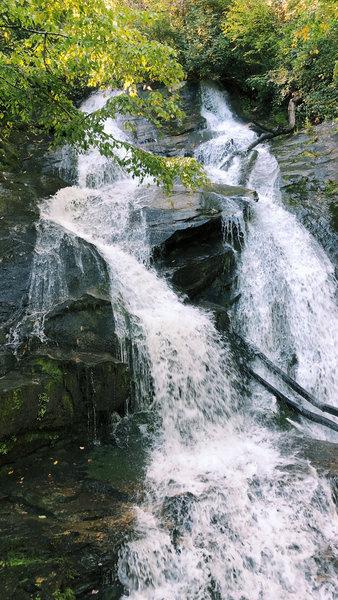 Ammons Creek Falls.