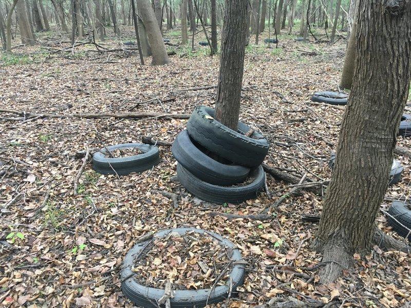 A Tire Graveyard from Pre-Reservoir Times