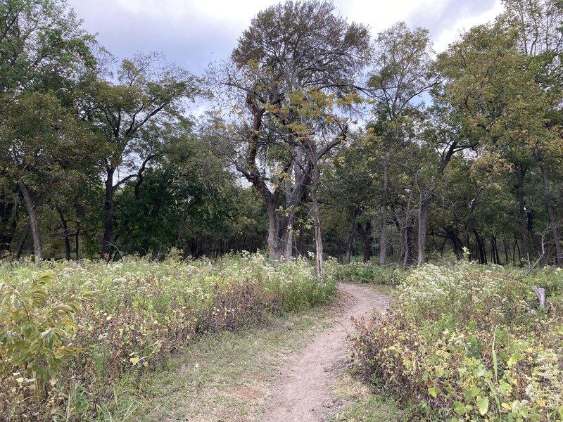 Trail bend