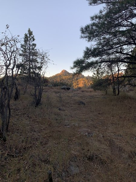 A view of Hualapai Peak from Potato Patch Loop.