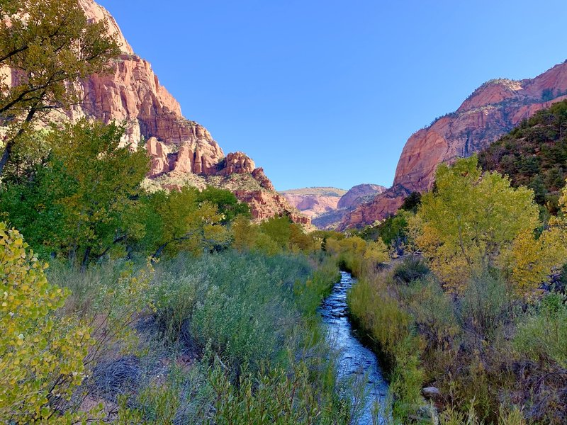 Western view of La Verkin Creek flowing through Kolob Canyon.