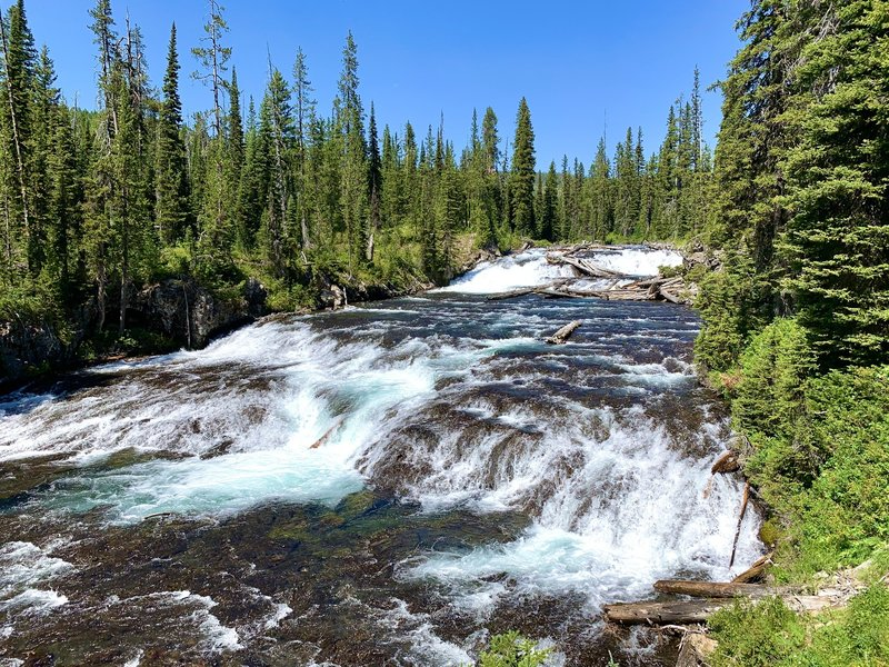 The Bechler River and its tributaries topple thousands of feet as they flow from the continental divide to the wetland meadows below. Falls and rapids are a constant as the trail winds its way down the Bechler Canyon.