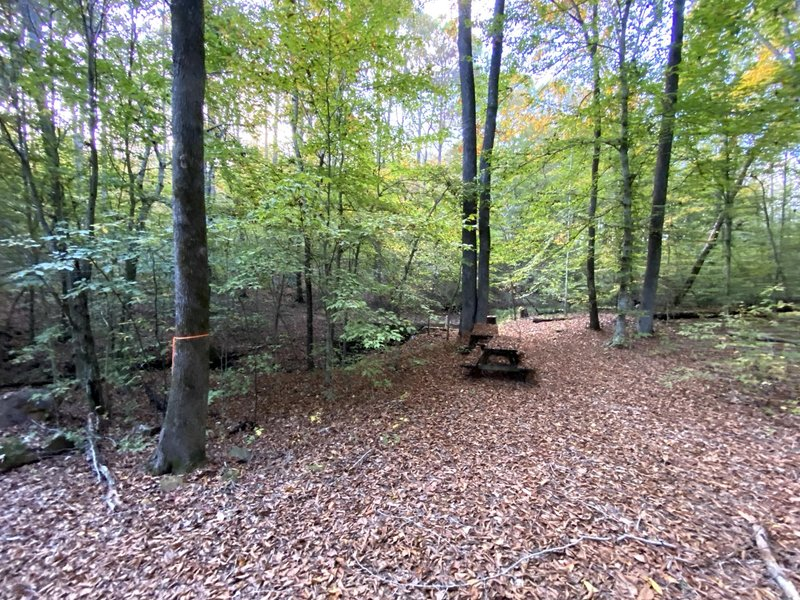 Picnic spot on the trail.