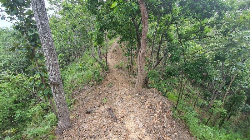 Ridge trail in the Nam Phrae backcountry.