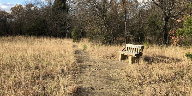 Rest bench on the Redbud Valley Main Trail.