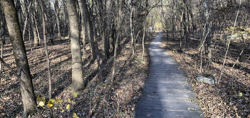Boardwalk section of the Redbud Valley Main Trail.