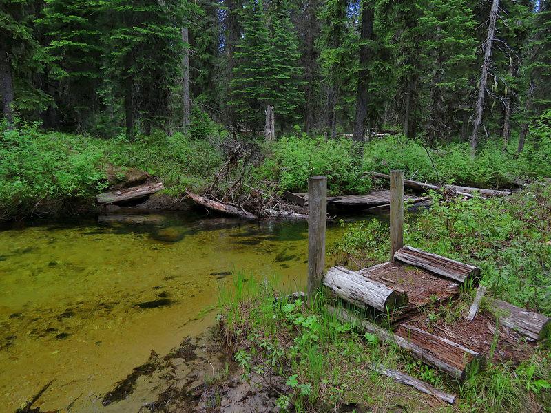The missing bridge at Twentymile Creek.