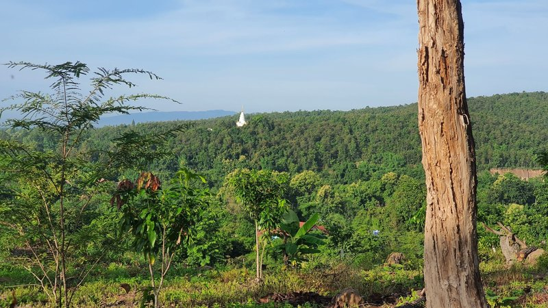 Distant view of Wat Prathat Doi Ku Kam temple, the starting point of another nice trail running route.