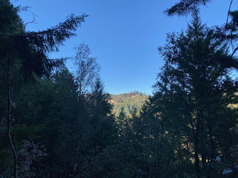 Views of the surrounding mountains peak through the trees as you travel the Nutmeg Trail.