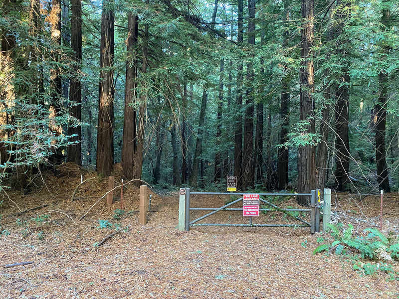 The trail descends into Long Ridge Open Space Preserve through this gate.