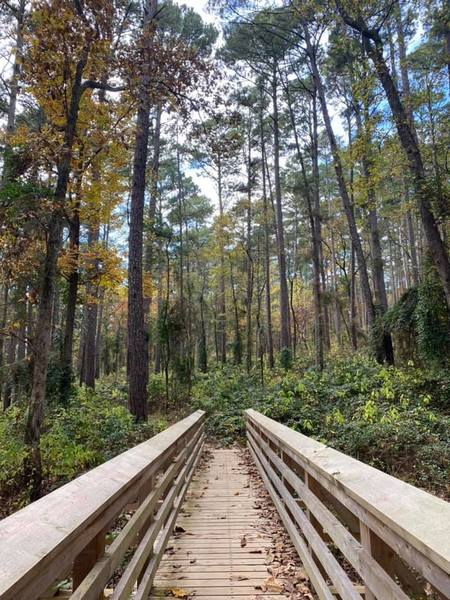 Bridge on the Whispering Pines Trail at Tyler State Park.