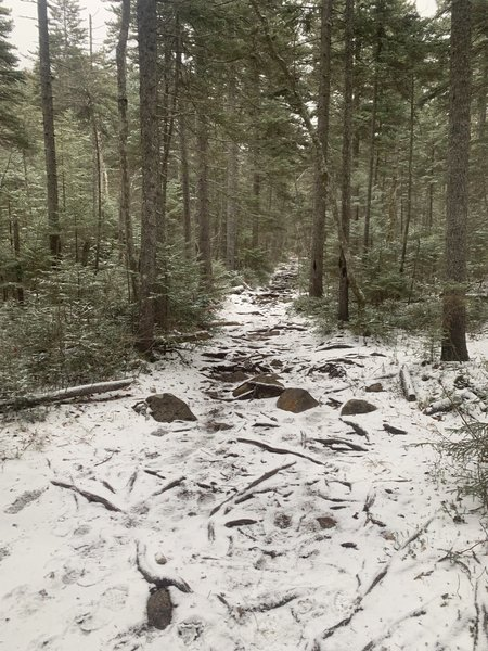 Rocks and slippery snowy trail.