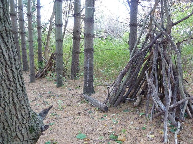 Wood Forts