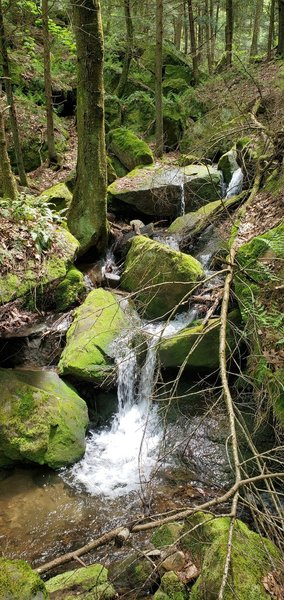 Tributary waterfalls