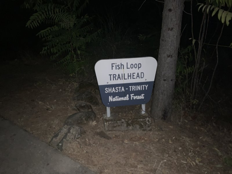Trailhead at Packers Bay boat ramp parking lot.