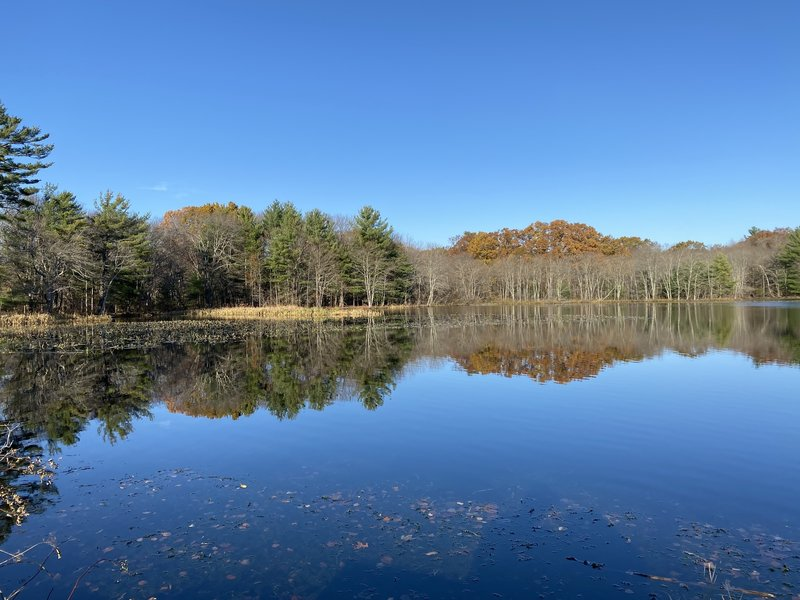 The Needham Reservoir