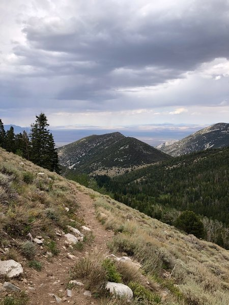 View northeast while descending Pole Canyon at Great Basin NP.