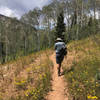 Hiker near the start of the Nebo Bench Trail