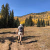 Hiking through the alpine meadow of the Gavilan Trail