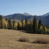 Evergreens and autumn aspens enclose an alpine meadow near the top of the Gavilan Trail.