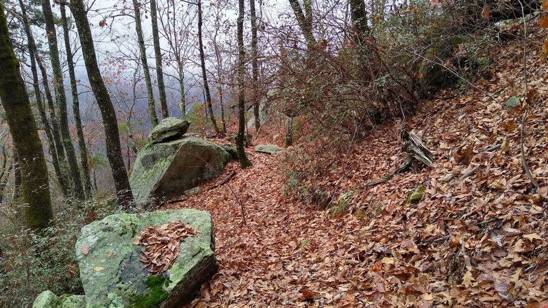 Some of the boulders commonly found on this trail.