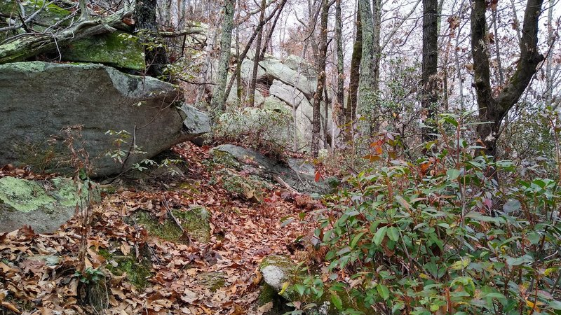 View of the trail as it passes along rock features.