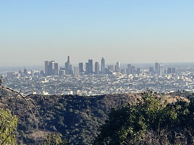 Picture of LA from the trail
