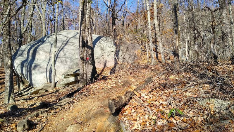 One of the many boulders visible in the fall/winter along the trail.