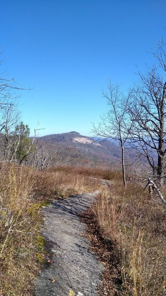 View of Table Rock in the distance hiking along Pinnacle Mountain Trail.