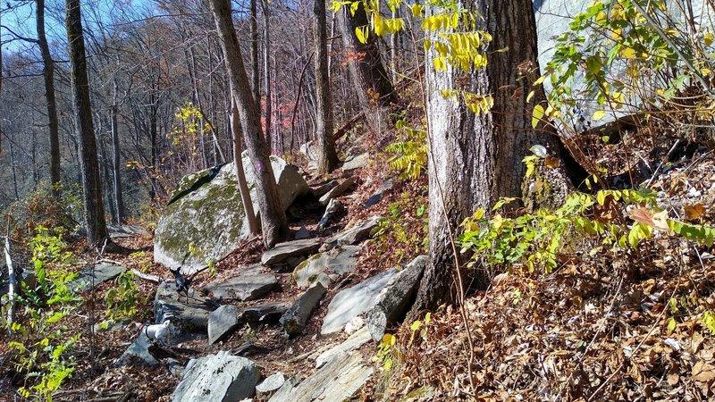Trail through rock along Mill Creek Falls spur trail.