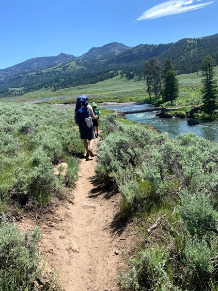 Trailhead. Be sure to start in the right spot. There is another starting point for stock. If you start here, there is a bridge to cross the Soda Butte Creek.