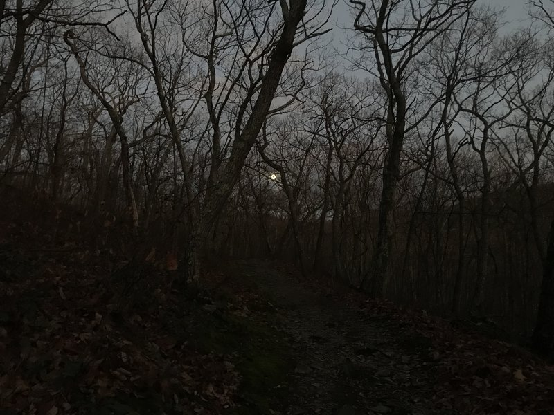 Moonlit path as we descend from Sunset Rock.