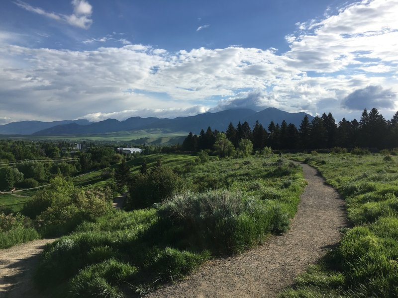 View of the Bridger Mountains from Peet's Hill.