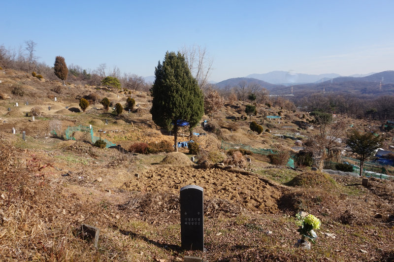 Cemetery to the south of Godeok-ro.