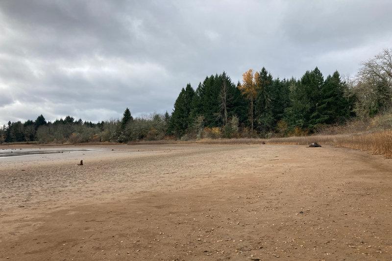 Exploring the lake shore of the penisula.