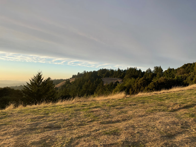 A view looking out over Long Ridge Open Space Preserve.  You can see the trail in the distance.