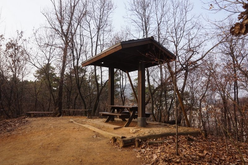Picnic spot in Dulle Forest