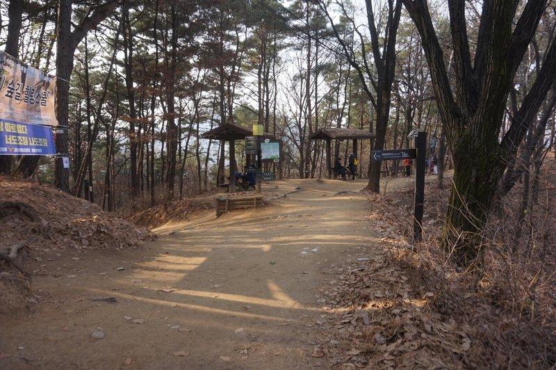 Seoul Trail on Daemosan Mountain