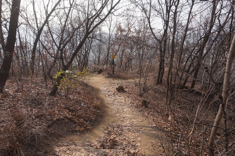 Seoul Trail towards Yemgok-Dong