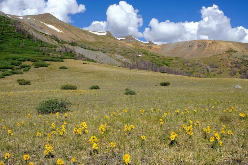 Saddle of San Luis pass