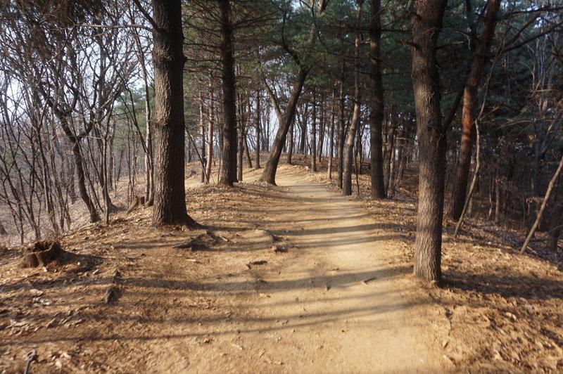 Seoul Trail section 4 towards Sadang, taken 7th Dec 2020