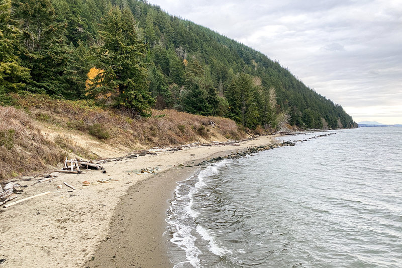 Clayton Beach provides a pleasant stretch of sand dotted with driftwood.