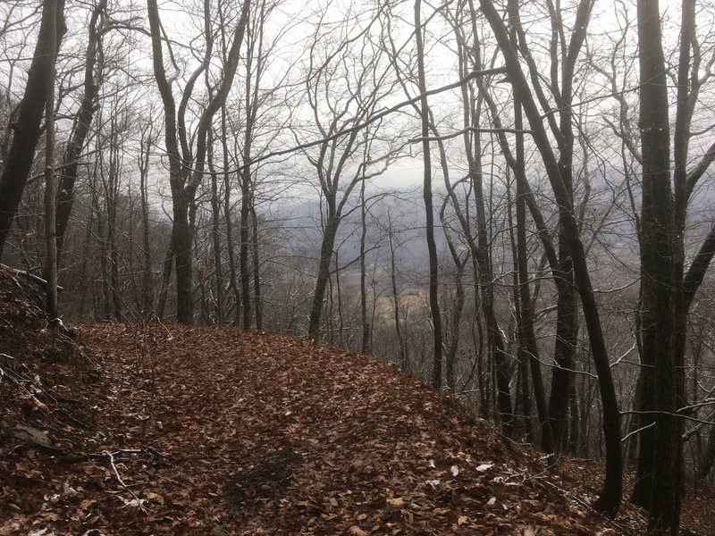 View down to valley from trail.