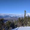 The Presidentials