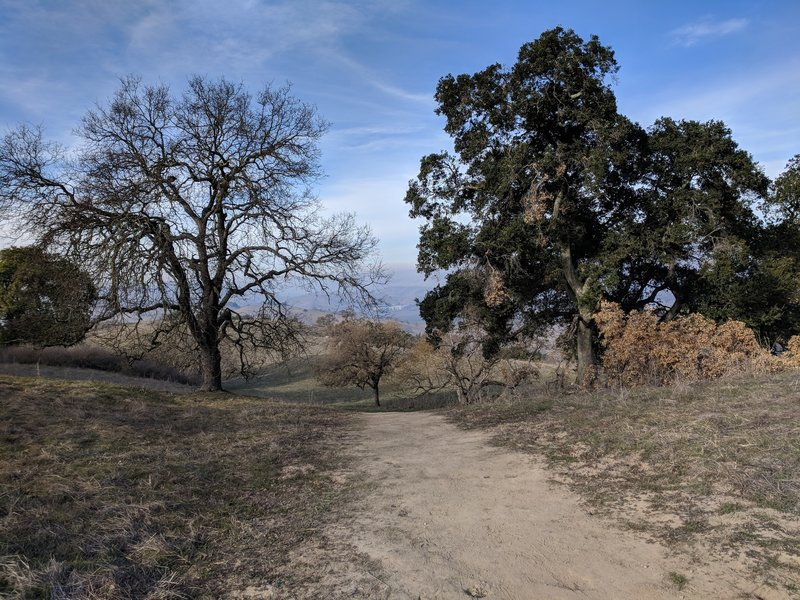 Top of the trail