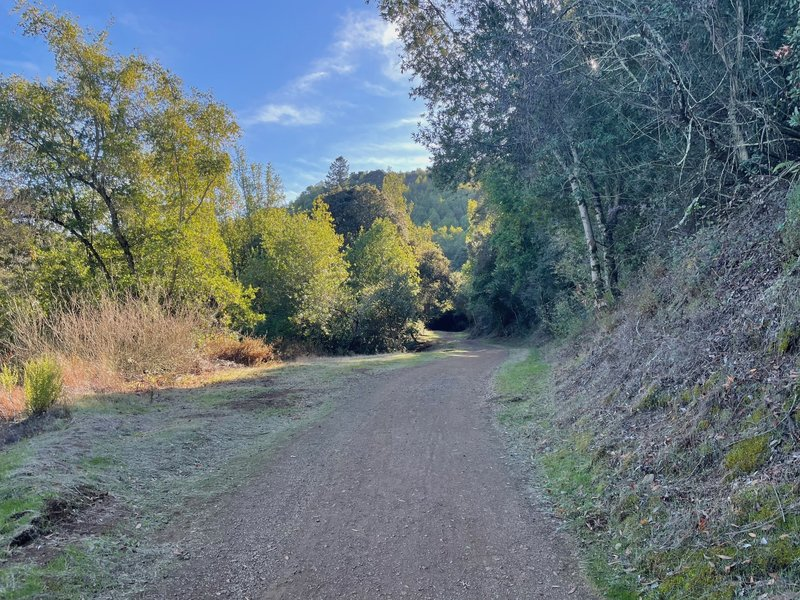 The trail as it minds its way up through El Sereno Open Space Preserve.