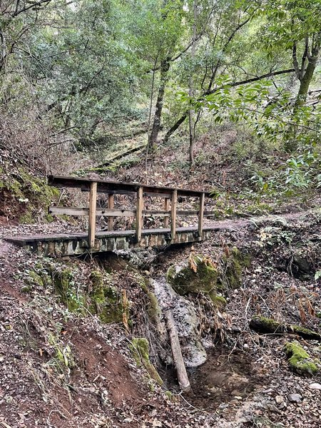One of 20 wooden bridges the trail crosses.